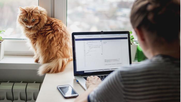 Arbeiten im Home-Office © olezzo, stock.adobe.com
