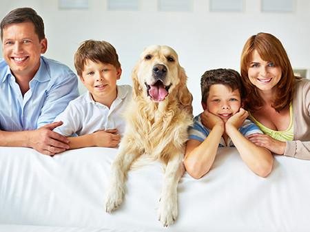 Kleinfamilie mit Hund am Sofa © pressmaster, Fotolia