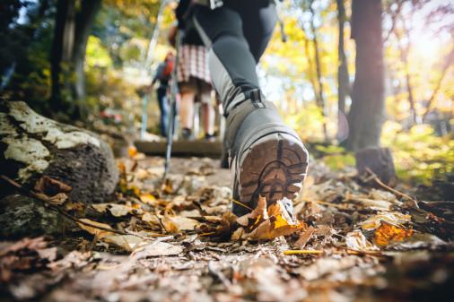 Leichtwanderschuhe im Test © leszekglasner, stock.adobe.com