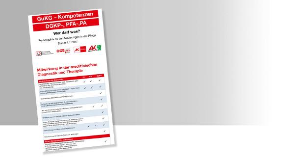 Pocketguide Pflege: Wer darf was? © -, AK Stmk