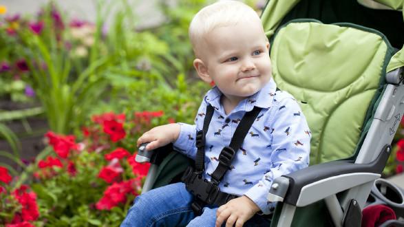 Kinderbetreuungsgeld neu: Welche Regelung ab wann gilt © Andrey_Arkusha - adobestocke, AK Stmk