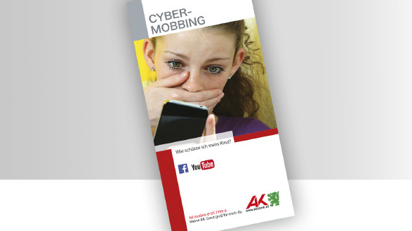 Broschüre Cybermobbing © -, -