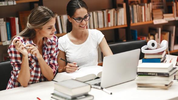 Studierende in er Bibliothek vor einem Laptop.  © stock.adobe.com/Solislmages, AK Stmk