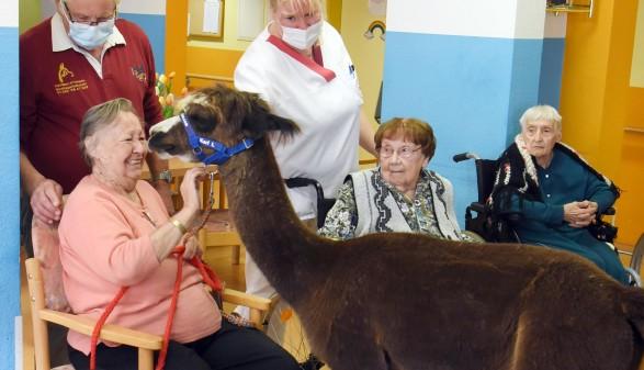 Pflegebedürftige Menschen können mittels Kurzzeitpflege bis zu sechs Wochen in Pflegeheimen betreut werden. © Waltraud Grubitzsch - dpa - picturedesk.com, AK Stmk