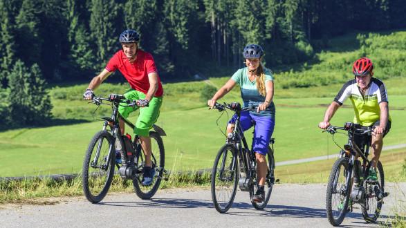 3 Radfahrer mit E-Bike © ARochau , stock.adobe.com
