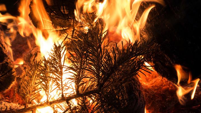 Nach dem Jahreswechsel und um den 6. Jänner ist die Gefahr von Christbaumbränden besonders hoch.  © travelguide, AdobeStock