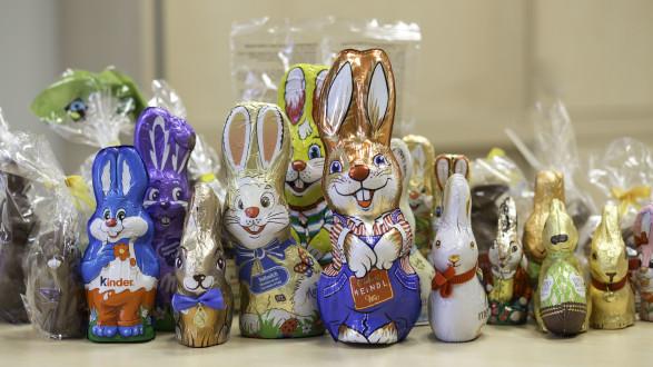 25 Schokolade-Osterhasen wurden einem Test unterzogen. © Temel, AK Stmk
